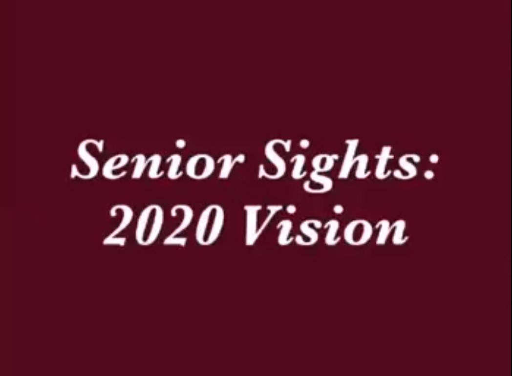 Senior Visions