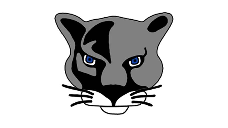 Pine Beach Panthers