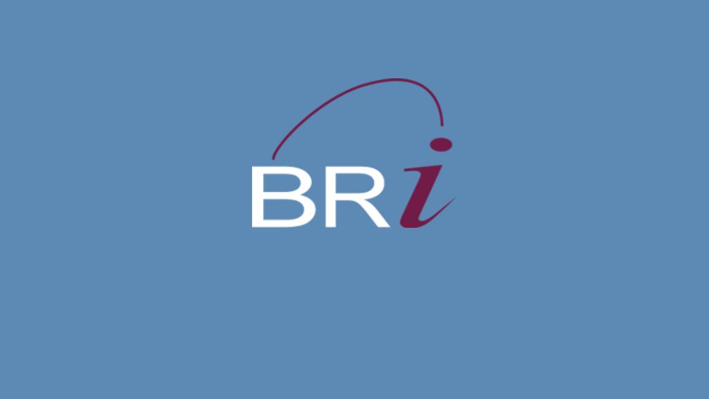 BRI Benefits Resources Inc